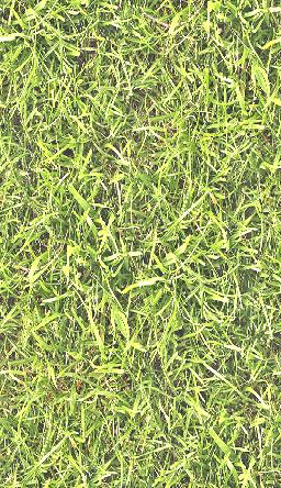 grass_m2_1