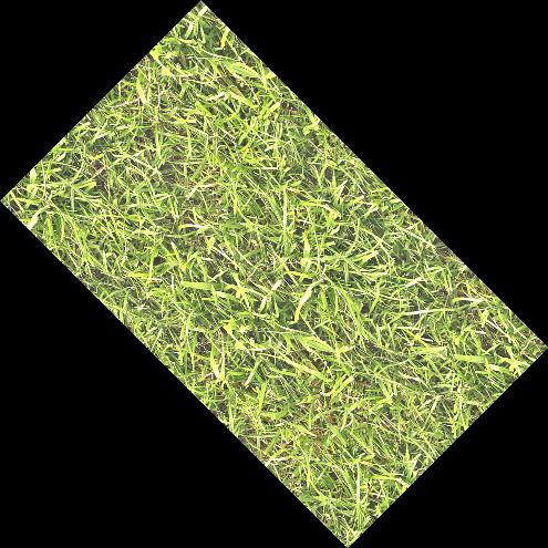 grass_m2_2
