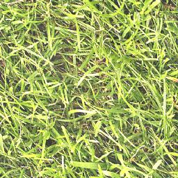 grass_m2_3