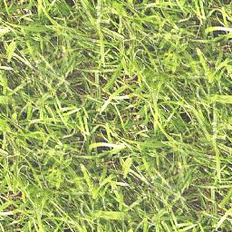 grass_m2_4