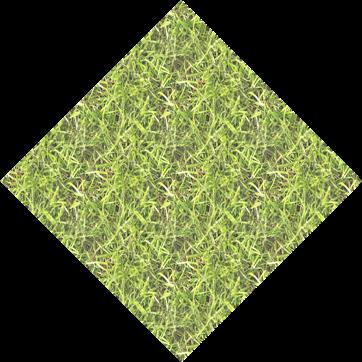 grass_m2_6