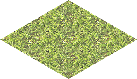 grass_m2_7
