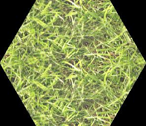 grass_m2_8