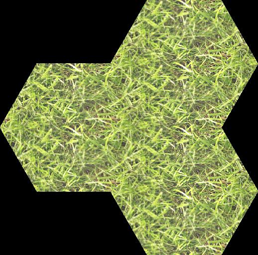 grass_m2_9